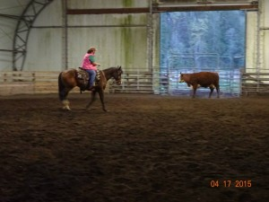 Sorting Practice @ DS Stables | Silver Creek | Washington | United States