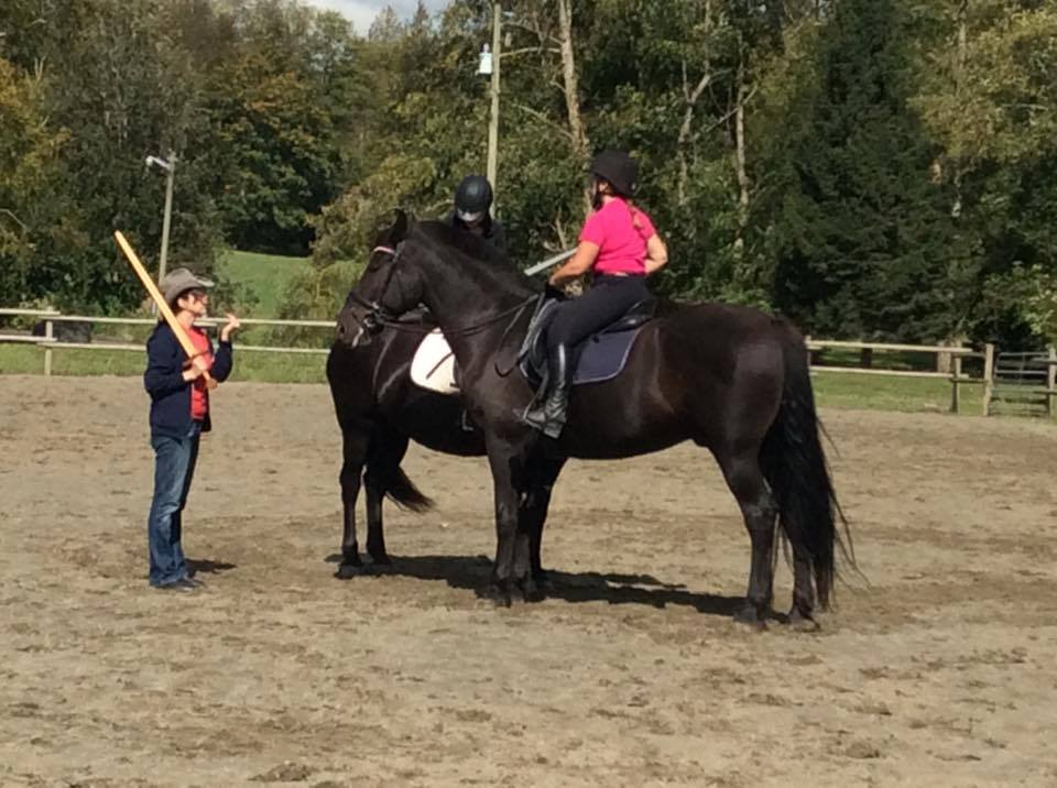 Intro to Mounted Combat @ The Grene Wode | Langley Township | British Columbia | Canada
