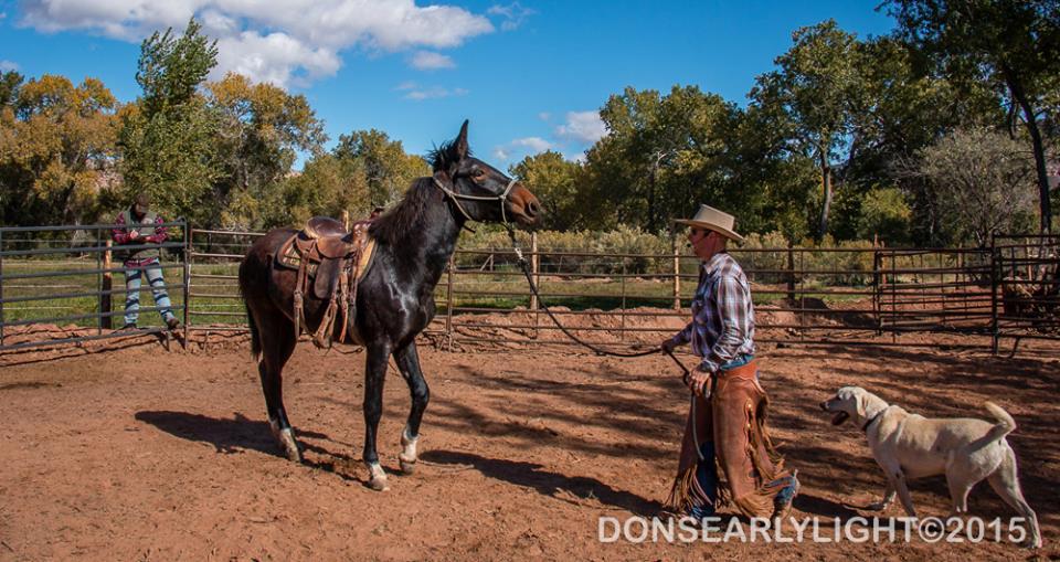 Mule Clinic - Ty Evans @ Butlerhill Equestrian Center | Burlington | Washington | United States
