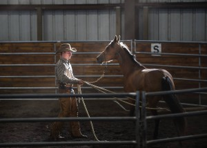 """Solving the Spook"" Evan Bonner Horsemanship Clinic @ Olympic Glen Arena 