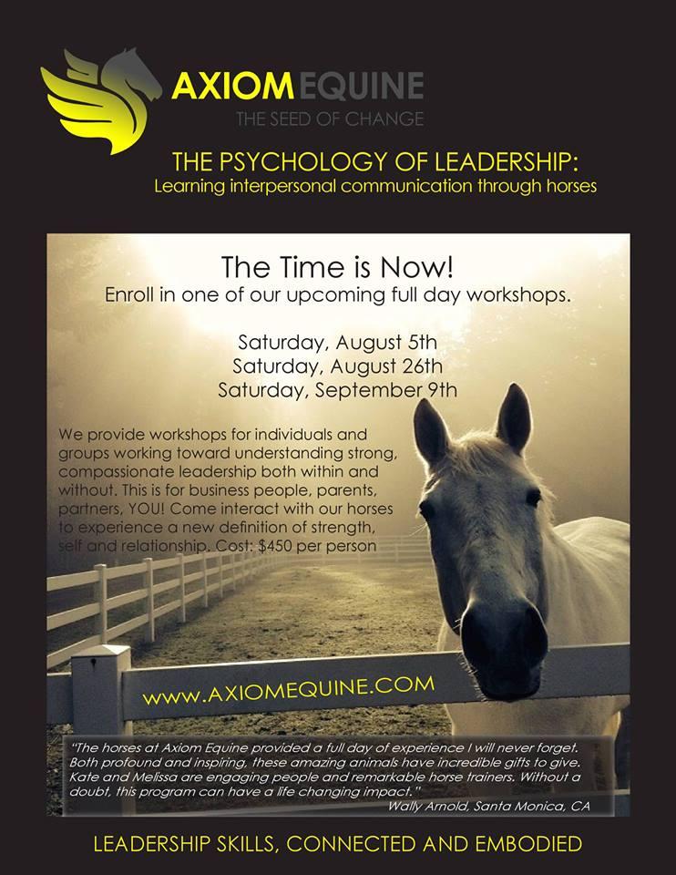 The Psychology of Leadership @ Axiom Equine | Vashon | Washington | United States