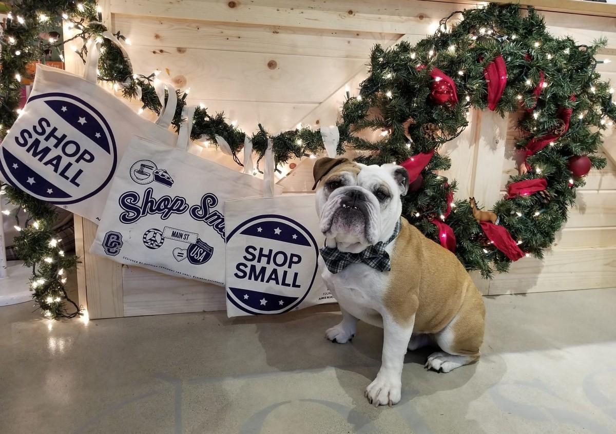 Olson's Holiday Party @ Olson's Tack Shop | Bellevue | Washington | United States