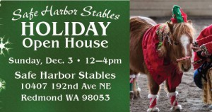 S.A.F.E. Holiday Open House @ Save A Forgotten Equine - SAFE | Redmond | Washington | United States