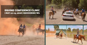 Equine Confidence Clinic @ Paragon Farms | Snohomish | Washington | United States