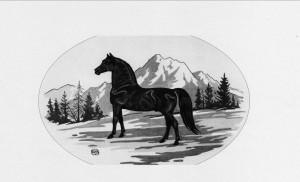PNW Morgan Horse Show @ Washington Horseman Tacoma Unit #1 | Spanaway | Washington | United States