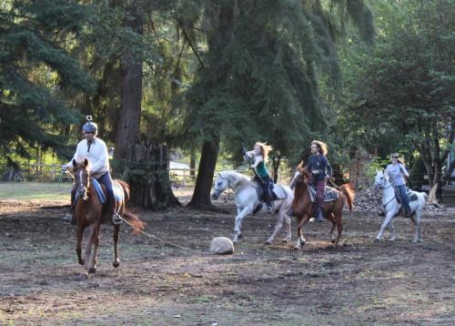 Beginner Horseback Archery Clinc @ Flying Duchess Ranch | Arlington | Washington | United States