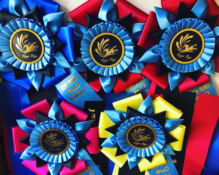 River Run Spring Fling I & II @ Donida Farm Equestrian Center | Auburn | Washington | United States