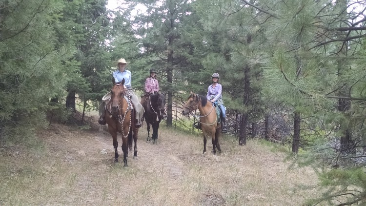 Horsemanship and Trail Clinic @ Coyote Mountain Ranch