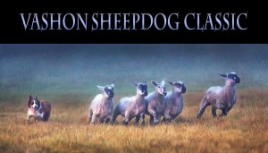 Vashon Sheepdog Classic @ Misty Isle Farm | Vashon | Washington | United States