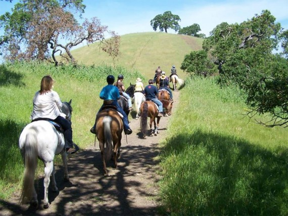 AHCCW Open Trail Ride @ Old Sawmill Meadow   Naches   Washington   United States