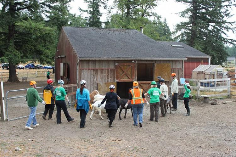 Emergency Animal Sheltering