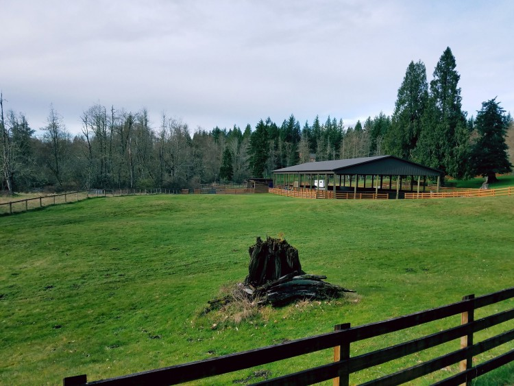Building an Arena Workshop & Farm Tour @ Two Cedars Farm | Hobart | Washington | United States