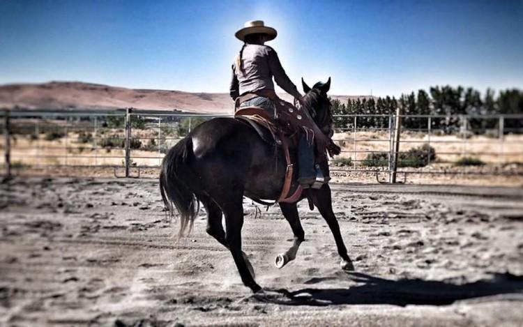 Lucia Clemetson Horsemanship Clinic @ Red Dragon Farm | Monroe | Washington | United States