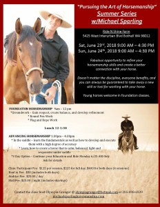 Michael Sparling Horsemanship Clinic @ Ride-N-Shine Farm | Bothell | Washington | United States
