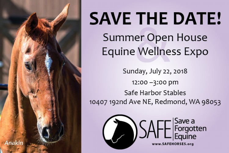 S.A.F.E. Wellness Expo & Open House @ Safe Harbor Stables | Redmond | Washington | United States