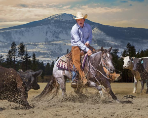 Cascades Futurity Aged and Weekend Event @ Deschutes County Fairgrounds and Expo Center | Redmond | Oregon | United States