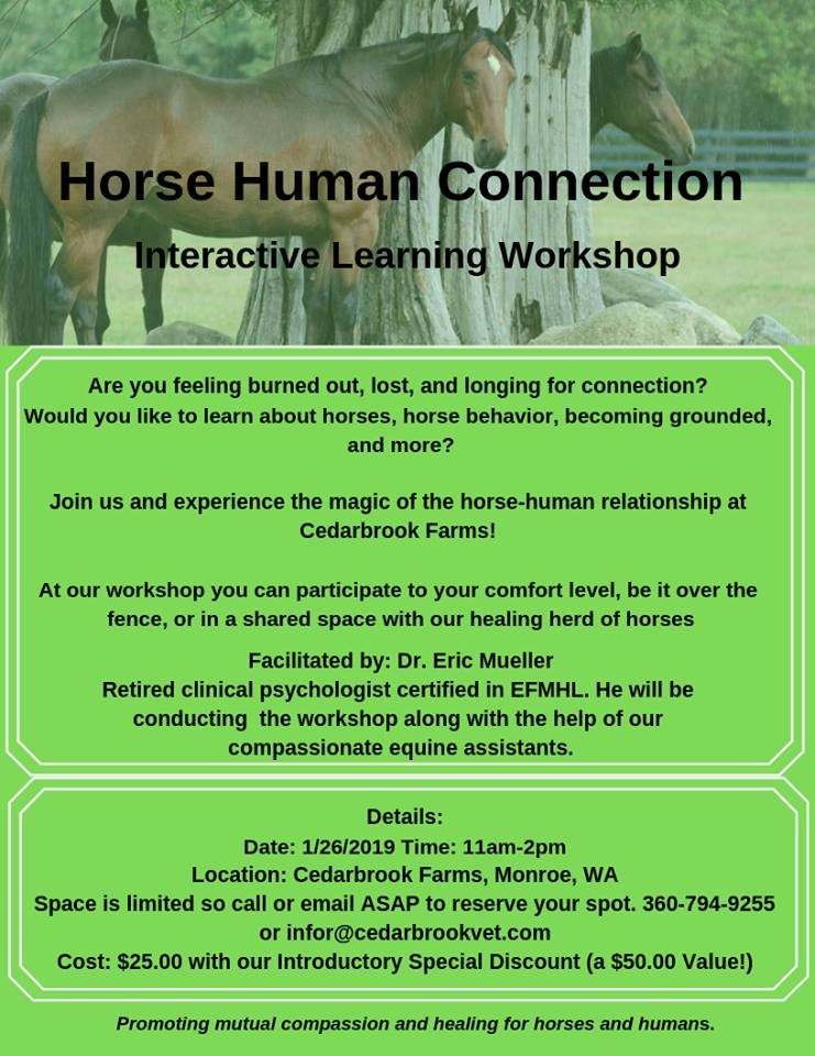 Horse Human Connection Workshop @ Cedarbrook Farms | Snohomish | Washington | United States