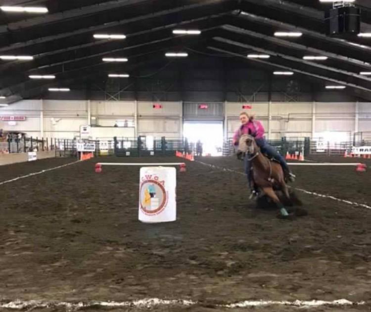 January SCWGA Show @ Evergreen State Equestrian Park | Monroe | Washington | United States