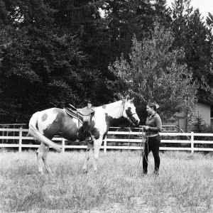 Lesson Day with Hoofbeat Attunement @ From the Mother Farm | Snohomish | Washington | United States