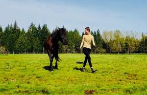 "The Infinite Bond Horse Method Presents ""Liberty 101"" Clinic @ High Mountain Equestrian | Estacada | Oregon | United States"