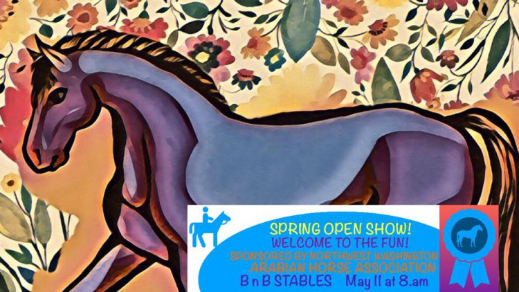 Spring Open Show @ B & B Stables | Bellingham | Washington | United States
