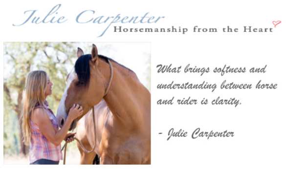 Julie Carpenter Horsemanship Clinic @ Bridle Trails State Park | Kirkland | Washington | United States