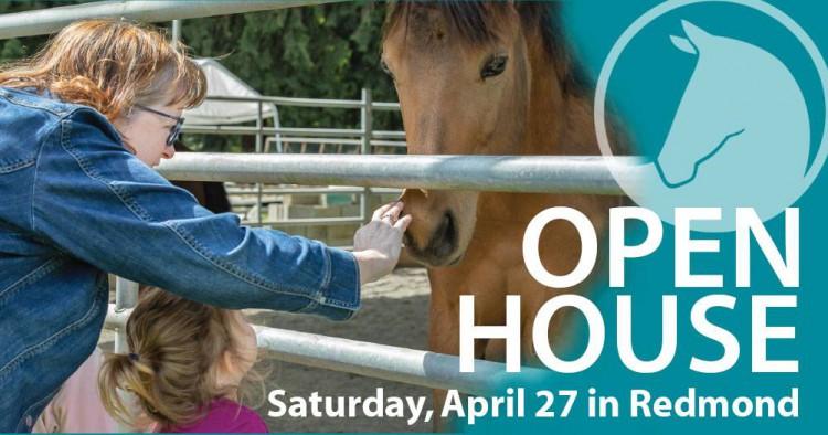 SAFE's Spring Open House @ Save A Forgotten Equine - SAFE | Redmond | Washington | United States