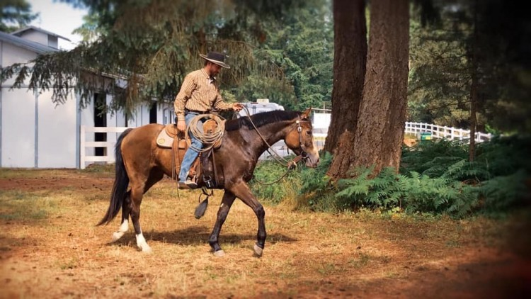 Holiday Horsemanship Workshop Special @ Cornerstone Ranch | Sultan | Washington | United States
