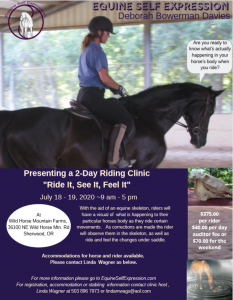 "Deb Davies ""Ride It, See It, Feel It"" 2 Day Clinic @ wildhorsemountainfarms.com 