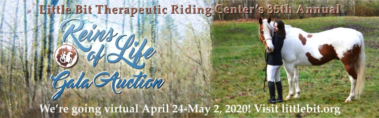 Online - Reins of Life Gala Auction @ Online