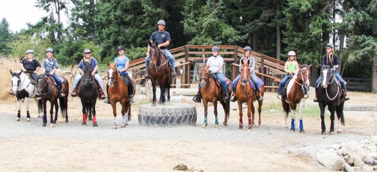 TR Mountain Trail Obstacle Clinic @ High Point Equestrian Center | Tacoma | Washington | United States
