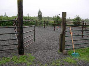 Best Horsekeeping Practices for Western Washington @ Zoom Webinar | Lake Stevens | Washington | United States