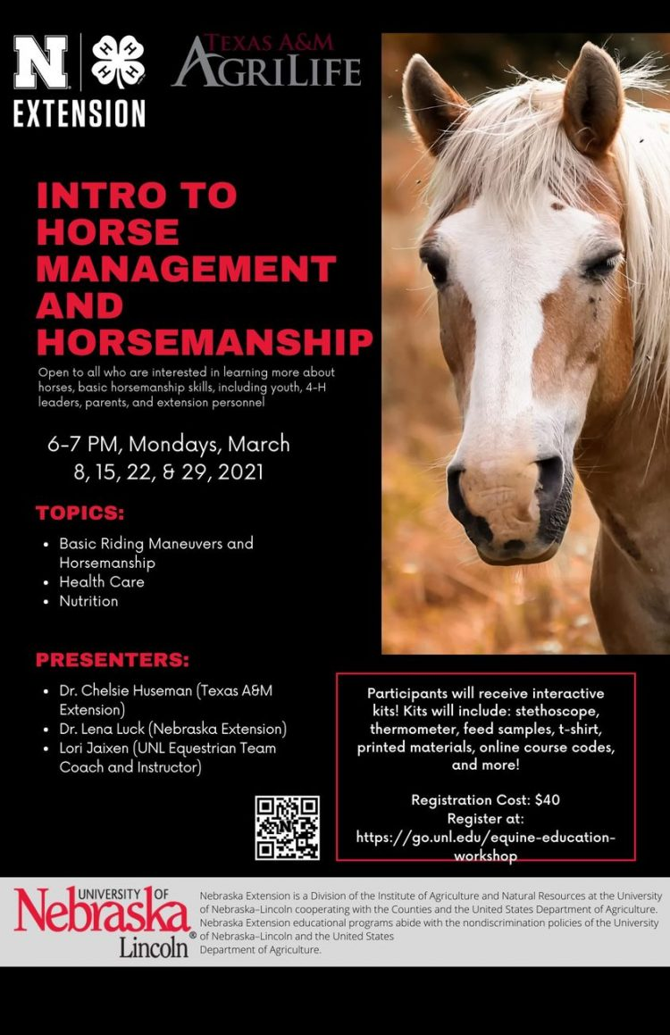 Online - Intro to Horse Management and Horsemanship
