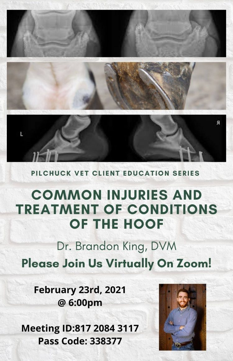 Common Injuries and Treatment of Conditions of the Hoof - Online @ Online Event